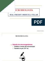 6. Bacteriología
