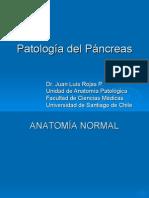 07-Patología Digestiva-Páncreas exocrino