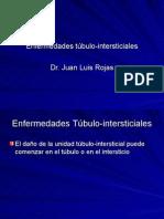 17-Nefropatología  Intersticial