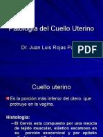 35-Pat. Del Cuello Uterino