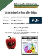Investigacion Transgenicos