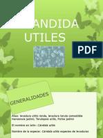 Presentacion Candida Utiles