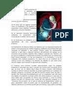 Agresión l.doc