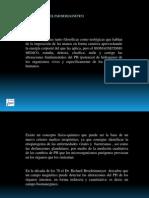 Presentación1.pptx ING.