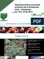 Conservación del territorio Surií de Brasil