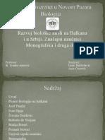 Srpski Naucnici
