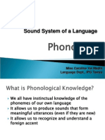 The Sound System of a Language (Phonology)