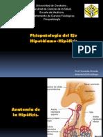FISIOPATO-HIPOTALAMO HIPOFISIS 2