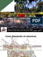 cata-de-vinos-para-asesores-1204720951280769-4.ppt