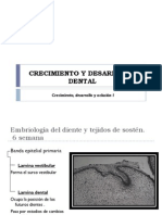Denticion Temporal - Oclusion