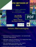 7. Holistic Methods for EFA - BUENO