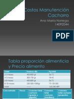 Costos Manutención Cachorro.pptx