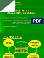 hesmostasiaycoagulacionsanguinea-090925061347-phpapp02