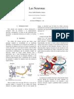 NeuronasIEEE