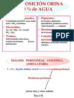 TEMA 5. Fisiologia Del Sistema Urinario OCW