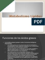 Metabolism o Lip i Dos