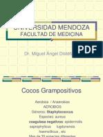 cocosgrampositivos-101215164927-phpapp02