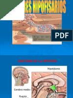 Tumores Hipofisiarios Clase Uprg 2
