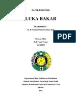 Cover Luka Bakar