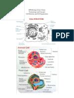 SPM Biology Form 4 CHP 2