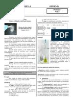 Apostila 2 FS I DOCAlex