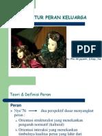 PP PERAN_2