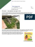 Forrações – como plantar um tapete verde _ Jardinagem e Paisagismo.pdf