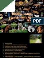 Biologia-Biodiversidad