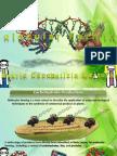 Molecular Farming