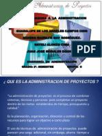 Exposicion Tics La Administracion Del Proyecto