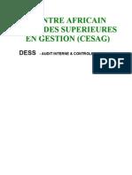 Cesag 2005 - Audit de Tresorerie