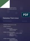 Sistema Nervioso Udp