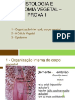 Histologia e anatomia vegetal – prova 1