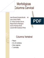cervicales-120824195046-phpapp01