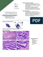 Pathology Week 6 p18-35