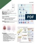 Hematologic Pathology p36-47