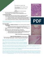 Pancreatic Pathology