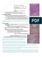 Pancreatic Pathology