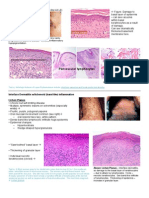 Pathology Week 5 p15-28