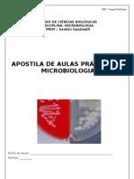 Apostila de Práticas de Microbiologia Professor Sandro Gazzinelli (1).doc