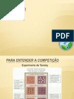competição.pptx