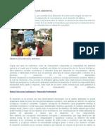 3.2.3 educacion ambiental.odt