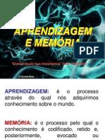 Aprendizagem e Memoria_2010[1]
