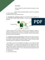 Marcoteorico-31.pdf