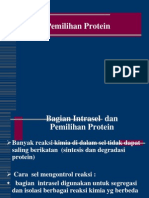 7. Pemilihan Protein