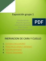 Sistema Circulatorio e Inervacion de Cabeza y Cuello (2)