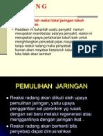 RADANG.ppt Prosus.ppt2