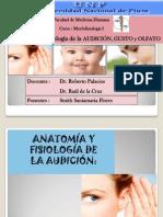 Anatomía del Oído, Gusto y Olfato