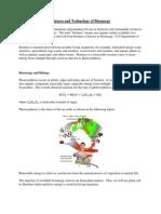 Bioenergy and Sciences