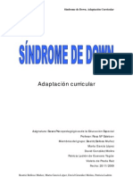 Sindrome_Down2009